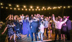 Ann Arbor Wedding Dj