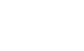 Solicitors general and their activities with the law officers